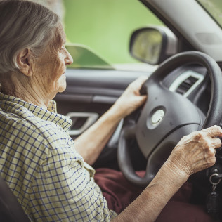 Adult & Senior Driving Course